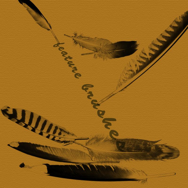 Кисти перья