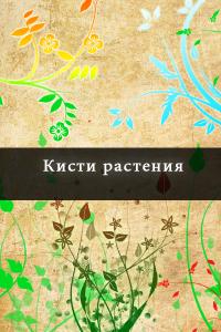 Кисти растения